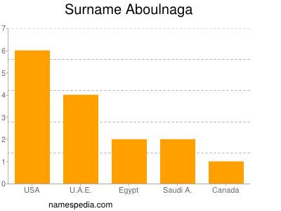 Surname Aboulnaga