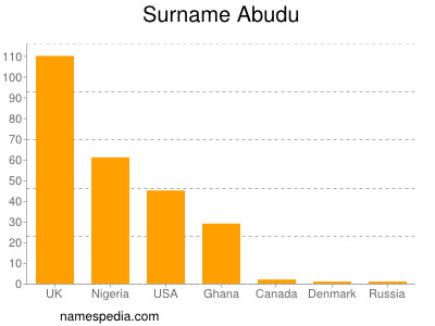 Surname Abudu