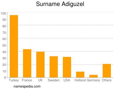 Surname Adiguzel