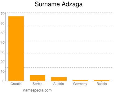 Surname Adzaga