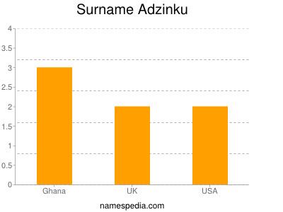 Surname Adzinku