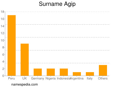 Surname Agip