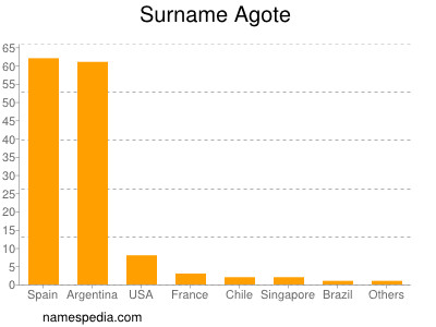 Surname Agote