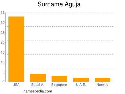 Surname Aguja