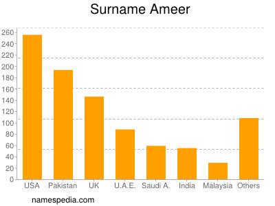 Surname Ameer