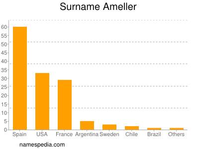 Surname Ameller