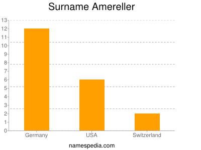 Surname Amereller