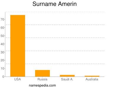 Surname Amerin