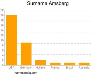 Surname Amsberg