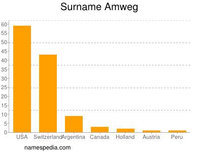 Surname Amweg