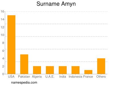 Surname Amyn