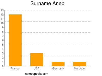 Surname Aneb