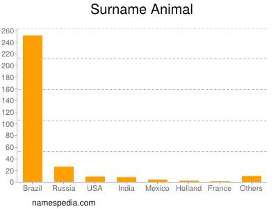 Surname Animal