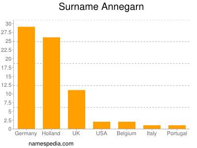 Surname Annegarn