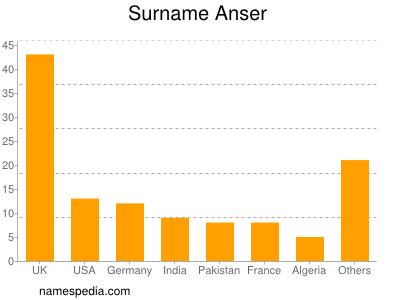 Surname Anser