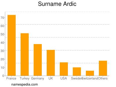 Surname Ardic
