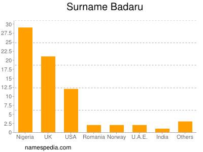 Surname Badaru