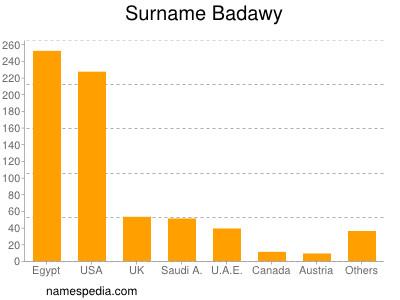 Surname Badawy