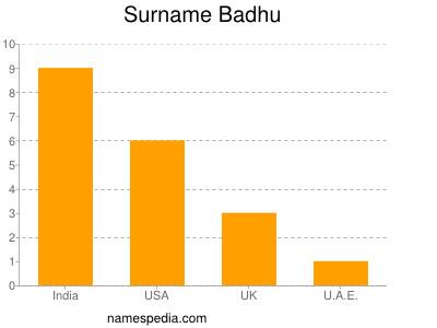Surname Badhu
