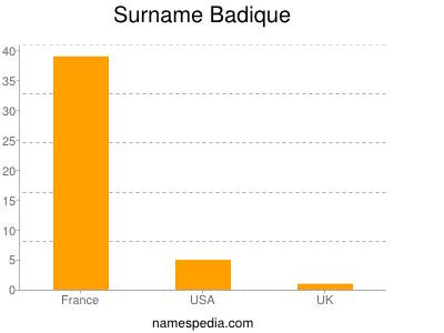 Surname Badique