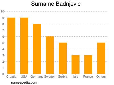 Surname Badnjevic