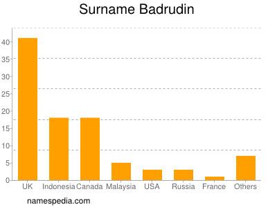 Surname Badrudin