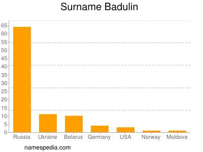 Surname Badulin