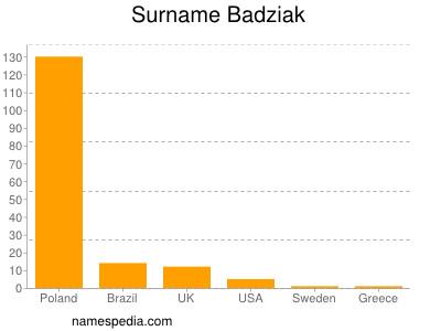 Surname Badziak