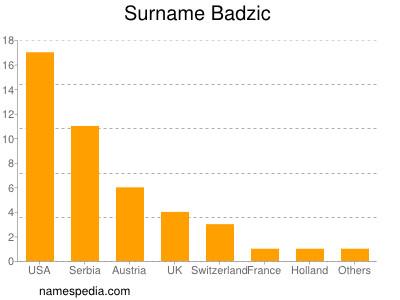 Surname Badzic