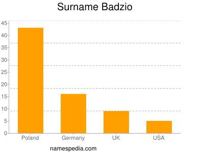 Surname Badzio
