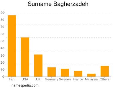 Surname Bagherzadeh