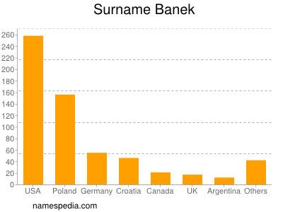 Surname Banek