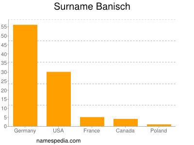 Surname Banisch