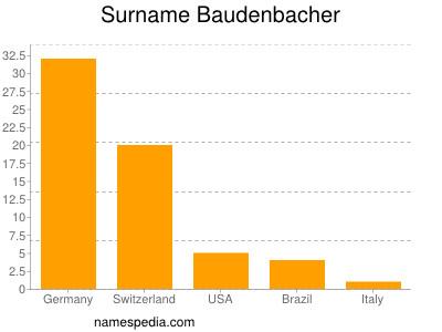 Surname Baudenbacher