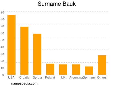 Surname Bauk