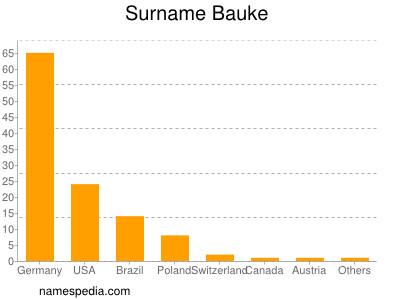 Surname Bauke