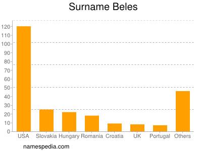 Surname Beles