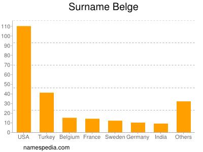 Surname Belge