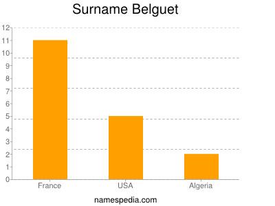 Surname Belguet