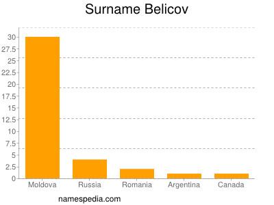 Surname Belicov