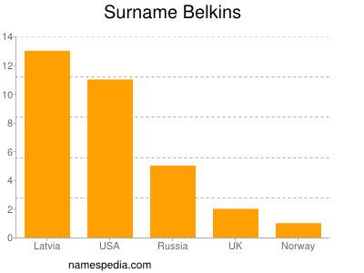 Surname Belkins
