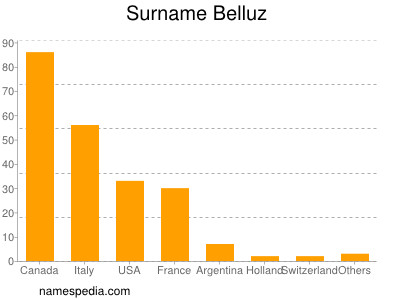 Surname Belluz