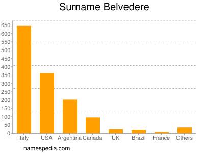 Surname Belvedere