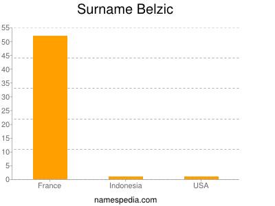 Surname Belzic