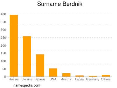 Surname Berdnik