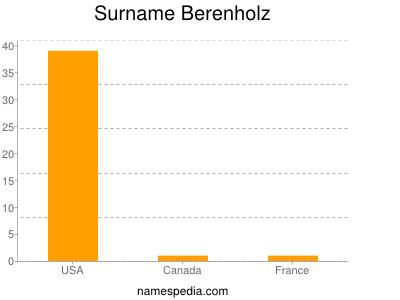 Surname Berenholz