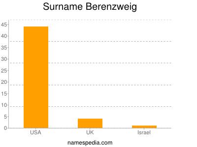 Surname Berenzweig
