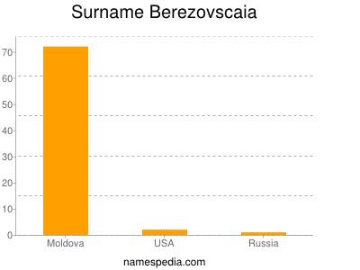 Surname Berezovscaia