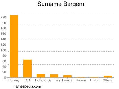 Surname Bergem