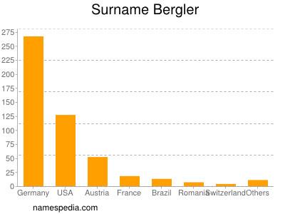 Surname Bergler